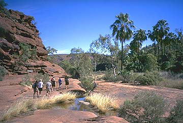 outbackaustralia.files.wordpress.com_2011_05_palm-valley.jpg